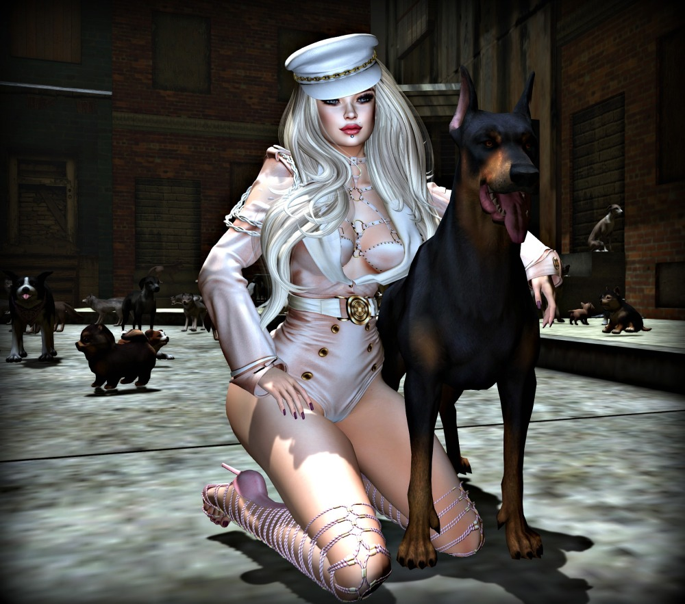 dogs 2